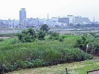 多摩サイから見る聖蹟桜ヶ丘