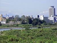 関戸橋手前からの聖蹟桜ヶ丘