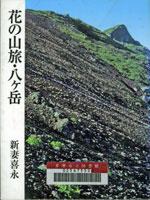 花の山旅・八ヶ岳
