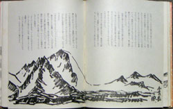 原野から見た山