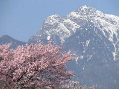 実相寺からの甲斐駒ヶ岳