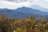 茅ヶ岳と初冠雪の富士